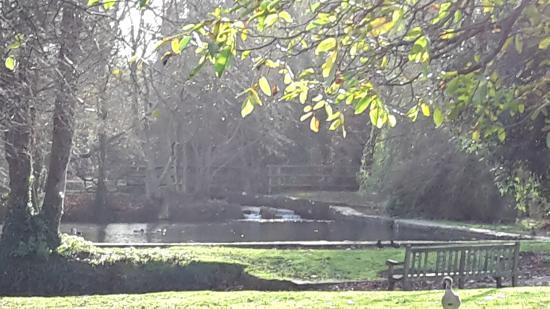 Sevenoaks, UK: Bradbourne Lake Park
