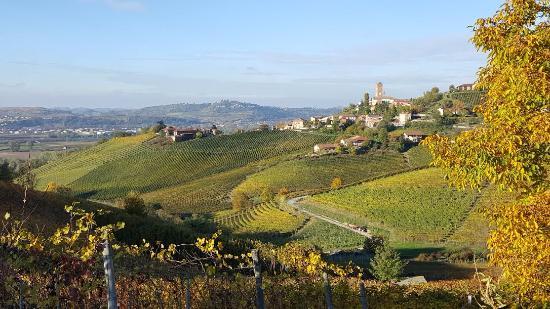 Meet Piemonte