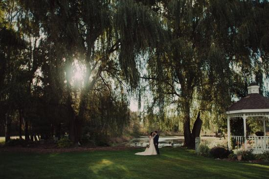 Willow Pond Bed, Breakfast and Events: Bridal photo in front of pond