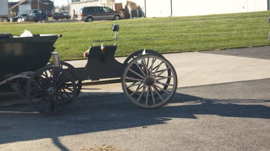 Berne, IN: The Amish housekeeping girls mode of transport to work