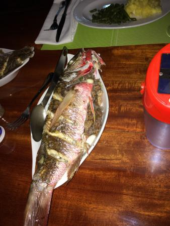 Saladero Eco Lodge: Fresh red snapper for dinner