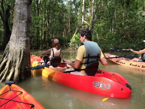 Saladero Eco Lodge: Mangrove tour