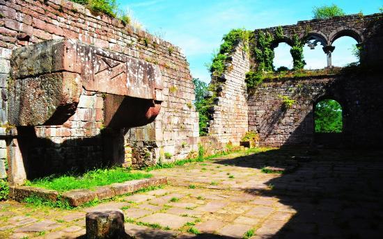 Ruine Wildenberg