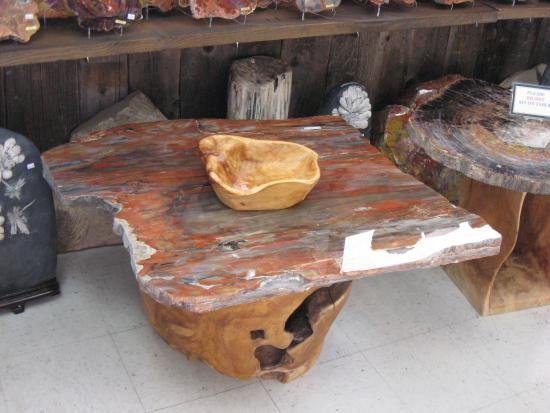 Jim Gray S Petrified Wood Co Coffee Table
