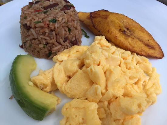 Coyaba Tropical Bed and Breakfast: Delicious breakfast