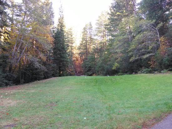 Boulder Creek Golf Club: IMG_20151121_145447_large.jpg