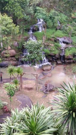 Phurua Resort: วิวน้ำตกที่ทานข้าว