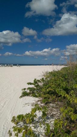 Eagle's Nest on Marco Beach: IMAG0271_large.jpg