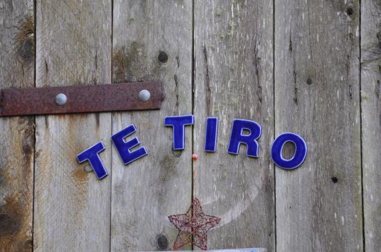 Te Tiro