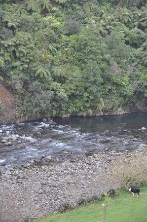 New Plymouth, Nueva Zelanda: View out to the river