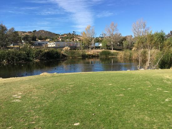 Image Result For Reidy Creek Golf Course
