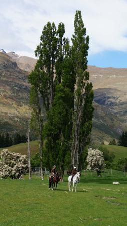كوينز تاون, نيوزيلندا: amazing views
