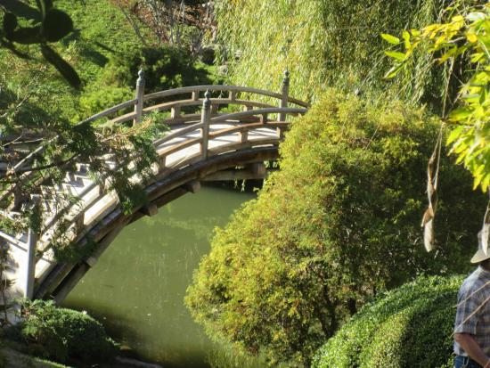 Huntingtons put in this Japanese Garden, Huntington Library, San ...