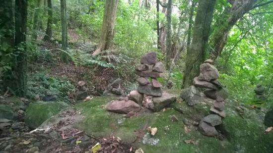 Te Aroha Motel: Lovely little cairns found on the Tui Domain walk