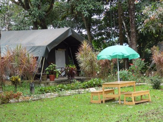 Tent Monica Picture Of Briar Tea Bungalows Valparai