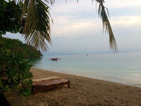 Plage picture of panorama diving resort bunaken island - Bunaken island dive resort ...