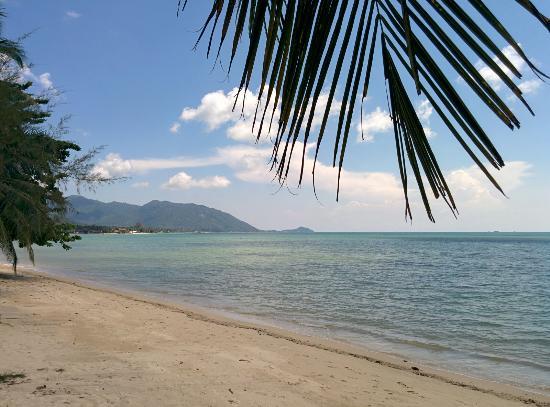 B 52 Beach Resort: IMG_20151121_121215_large.jpg
