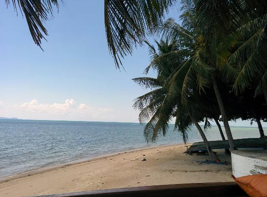 B 52 Beach Resort: IMG_20151121_113508_large.jpg