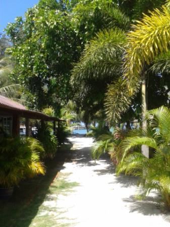 Senari Bay Resort: Lane