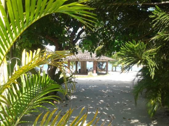 Senari Bay Resort: Beachside