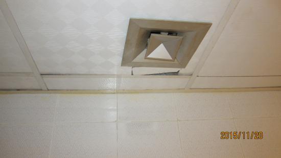 Golden 5 Almas Resort: Ванная комната