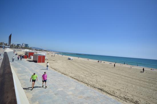 Nova Mar Bella beach - Picture of Nova Mar Bella Beach, Barcelona - TripAdvisor