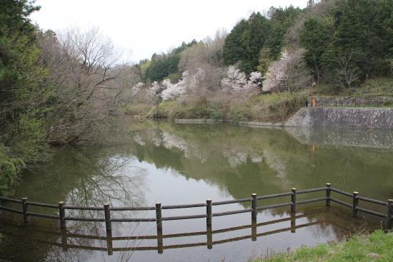 Minakuchi Kodomo no Mori Park