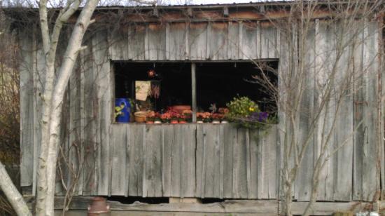 The Inn & Spa at Cedar Falls: IMAG0645_large.jpg