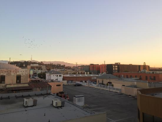 Doubletree  S Los Angeles St Room Prices