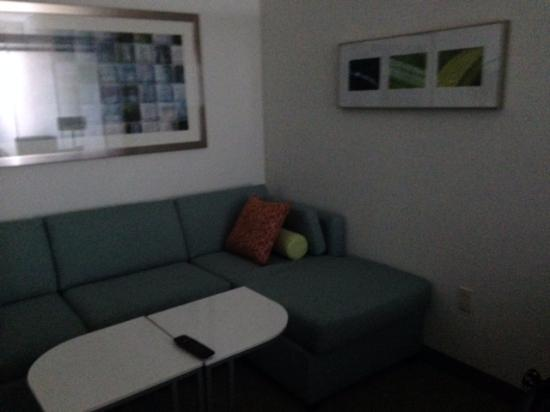 SpringHill Suites by Marriott Tampa North / Tampa Palms : roomy