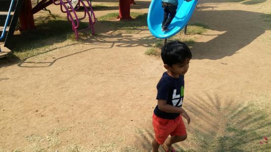 Tithal, Indien: 61 (3)_large.jpg