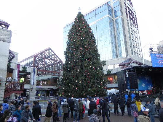 Quincy Market Christmas Tree Picture Of Quincy Market