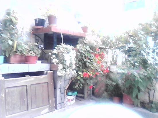 Vevi, Yunani: garden