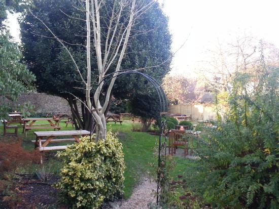Winchelsea, UK: secret garden