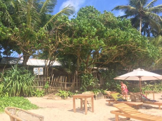 Sun N Sea Guesthouse: view from the beach
