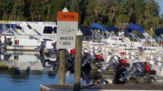 Dive Center of the Port Hotel and Marina: photo2.jpg