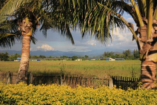 Baan Janthai: uitzicht