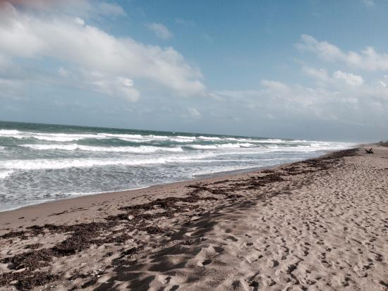 Isla Hutchinson, FL: The unspolit almost desolate beauty of Blind Creek Beach looking south