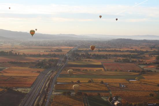 Napa Valley Drifters: Balloons over Napa in Autumn