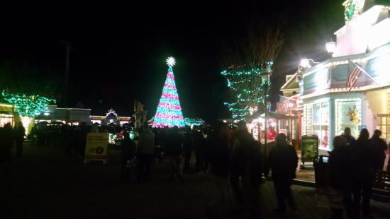 CHRISTMAS TREE LIGHTS DANCE - Picture of Six Flags Great Adventure ...