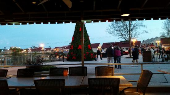 a view from our table to see the tree lighting festivities at