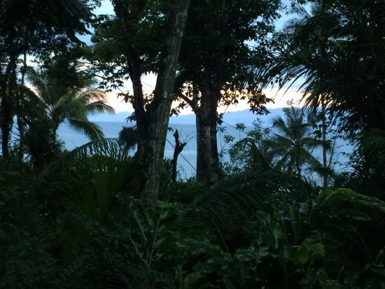 Copa de Arbol Beach and Rainforest Resort: photo6.jpg