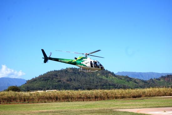 safari helicopter tours lihue hi with Locationphotodirectlink G60623 D526233 I160791365 Safari Helicopters Lihue Kauai Hawaii on LocationPhotoDirectLink G60623 D526233 I281813044 Safari Helicopters Lihue Kauai Hawaii in addition Safari Helicopters Lihue together with Safari Helicopter Tours Lihue further LocationPhotoDirectLink G60623 D526233 I31903028 Safari Helicopters Lihue Kauai Hawaii besides LocationPhotoDirectLink G60623 D526233 I253164379 Safari Helicopters Lihue Kauai Hawaii.
