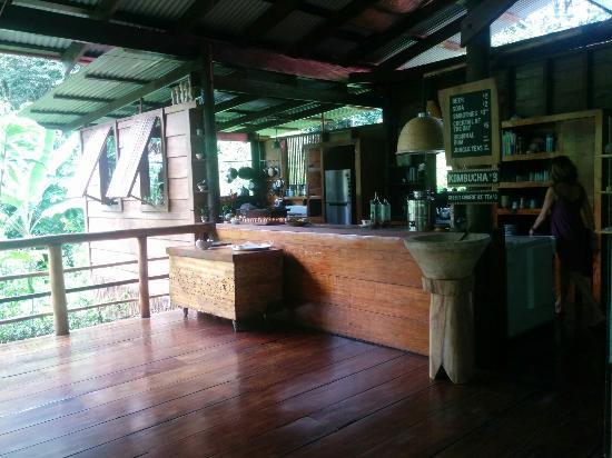 La Loma Jungle Lodge and Chocolate Farm: IMG_20151121_122959_large.jpg