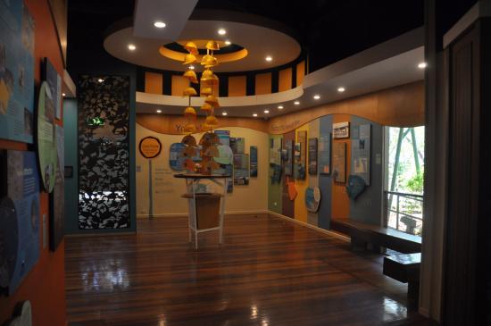 Bargara, Αυστραλία: Mon Repose turtle center