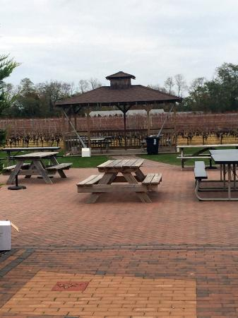 Jamesport, นิวยอร์ก: Outdoor seating: bring a picnic basket