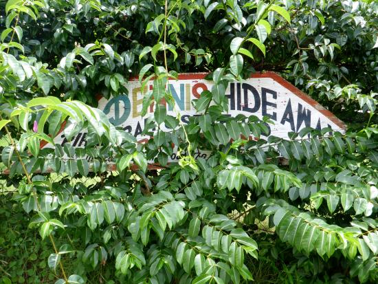 Dennis' Hideaway: Fitting signage