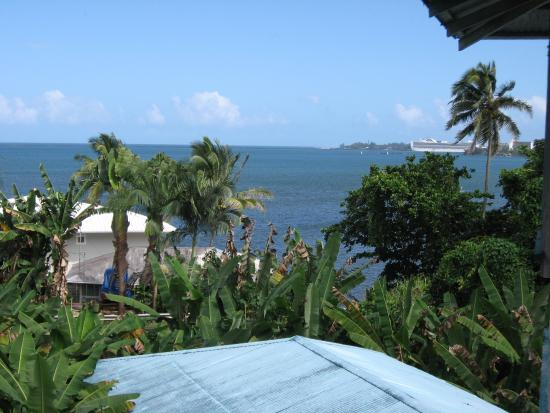 Wild Ginger Inn Hotel & Hostel: View from Room 21