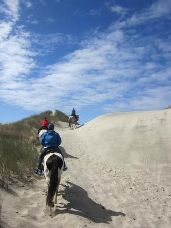 Florence, OR: On the dunes