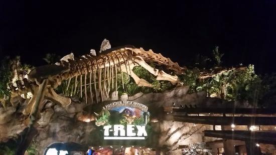 T rex bild von t rex orlando tripadvisor for T rex location